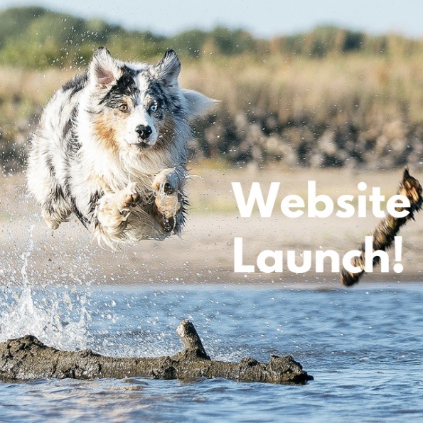 Spoiled Dog Designs does a website launch announcement